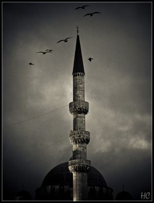 istanbul-39.jpg