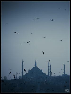 istanbul-51.jpg